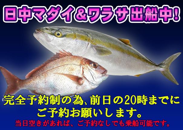 warasa_madai.jpg